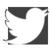twitter logo white11